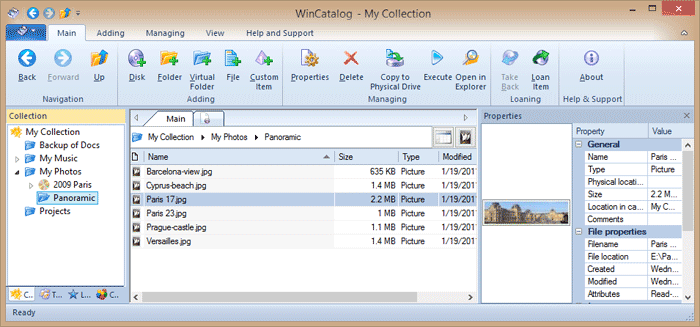 WinCatalog 2017 main window displays the catalog with the added disk and file properties