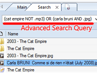 Use natural or advanced search queries